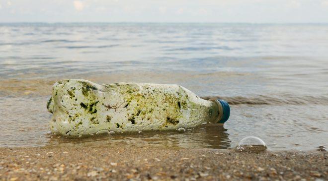 Finlandiya'nın en kirli ve en temiz sahilleri belirlendi