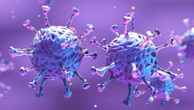 Salgın hız kesti, Finlandiya'da koronavirüs salgınında son durum