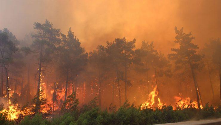 Kalajoki Ormanları'ndaki yangın henüz söndürülemedi