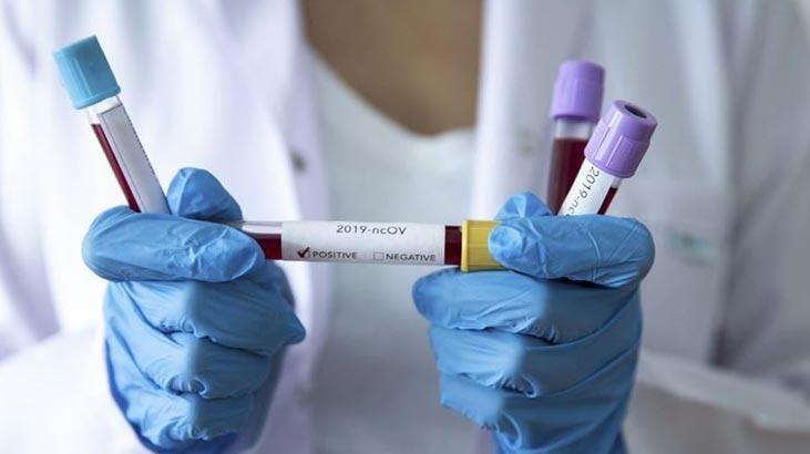 Finlandiya'da son bir gün içinde sadece 2 yeni koronavirüs vakası tespit edildi