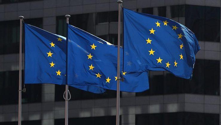 Finlerin Avrupa Birliği'ne olan desteği azaldı