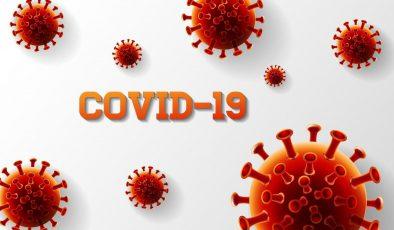 Finlandiya'da koronavirüs salgınında son durum (21.12.2020)
