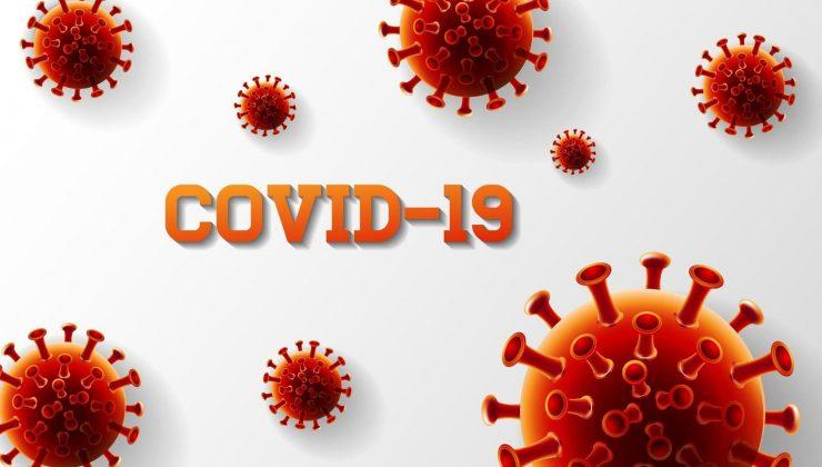 Finlandiya'da koronavirüs salgınında son durum (24.08.2020)