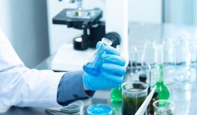 Finlandiya'da koronavirüs salgınında son durum (29.03.2021)