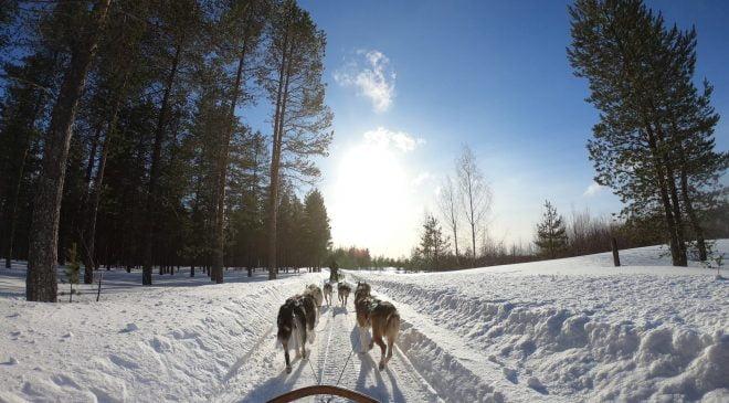Finlandiya, Noel'den önce sınırlarını turistlere açmayı planlıyor