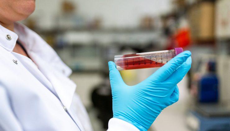 Finlandiya'da koronavirüs salgınında son durum (15.12.2020)