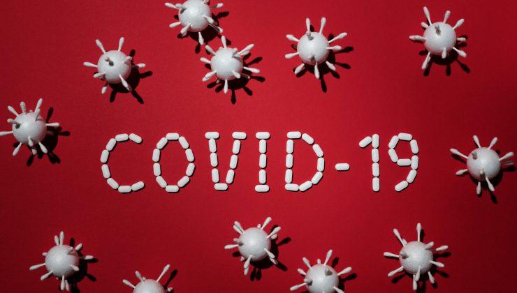 Finlandiya'da koronavirüs salgınında son durum (27.12.2020)