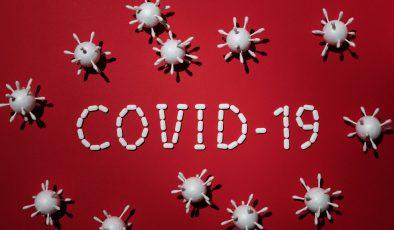 Finlandiya'da koronavirüs salgınında son durum (27.05.2021)