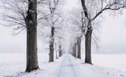 Sezonun ilk kar yağışı gerçekleşti